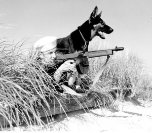 Coast Guard Canine Beach Patrol Thompson Machine Gun