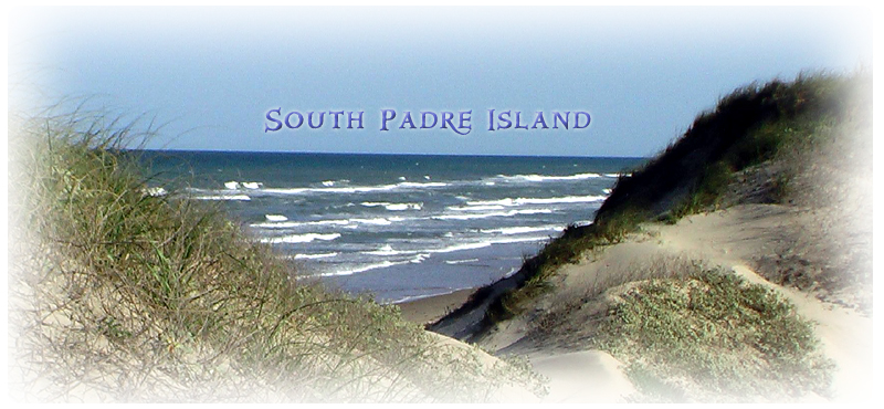 Near the Cameron-Willacy County Line on South Padre Island.